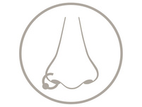 Fake Piercing - Tricolour